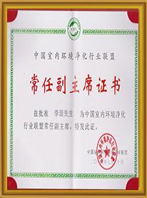 中国净化联盟常任副主席证书